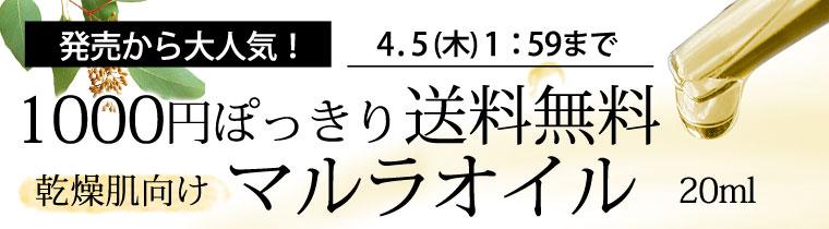 1000円ぽっきり&送料無料
