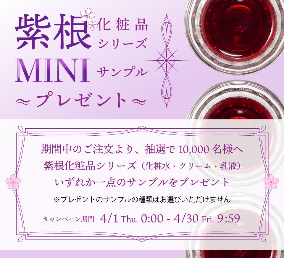 大人気!紫根化粧品ミニサンプルプレゼント